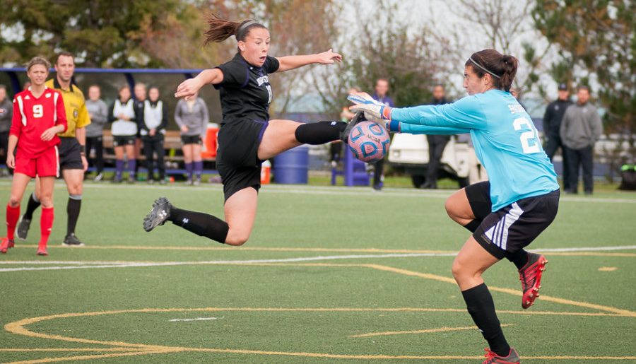 Fall Sports Preview – Women's Soccer: After NCAAs berth, Wildcats going for more