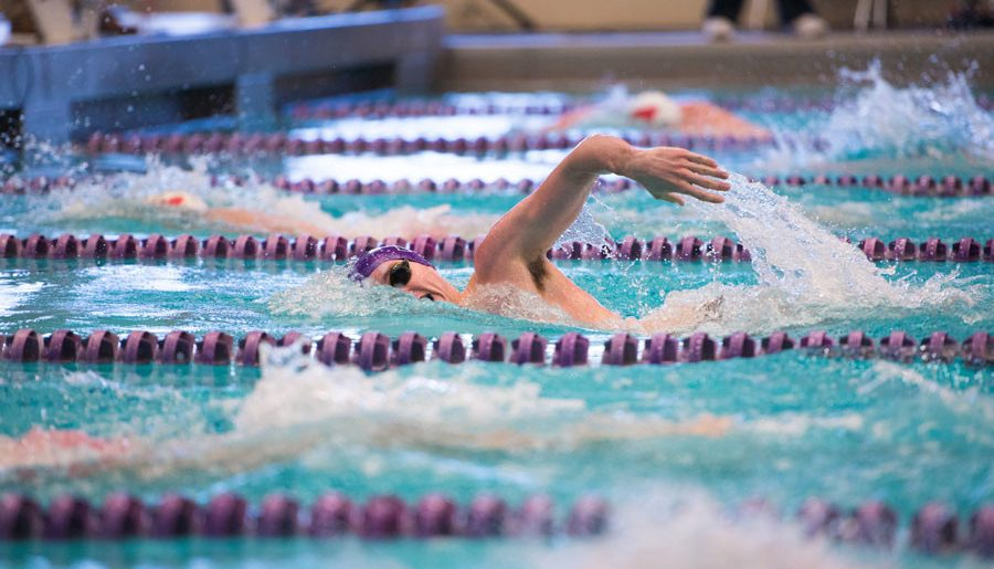Fall Sports Preview – Men's Swimming: Wildcats attempt to take step forward